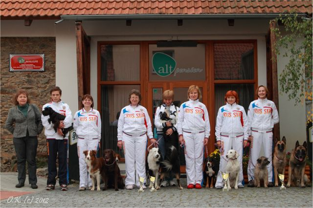 Сборная России на ЧЕ 2012