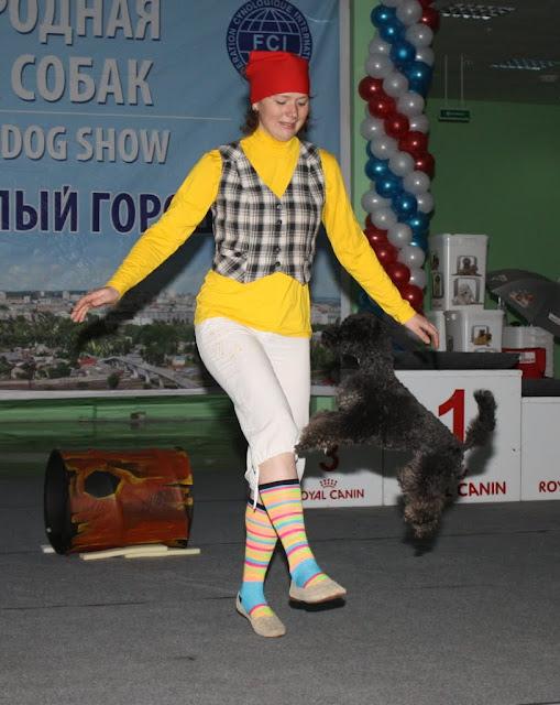 pokhvishchieva_iuliia_i_pudiel_rada_proghriess-2
